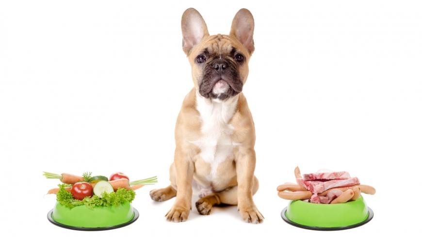 Готовые корма и натуральное питание для домашних животных